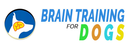 Brain Training For Dogs Review: Best Online Dog Training Course?